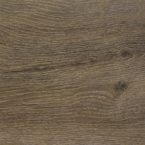 Tribute Monterey Oak