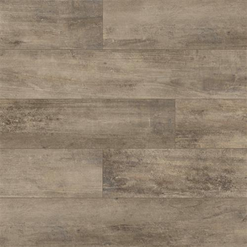 Plank Petrified Timber