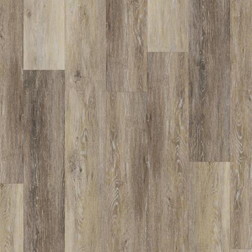 Banded Olive - Driftwood