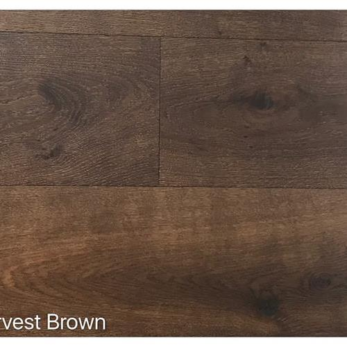 Wire Brushed Collection Harvest Brown