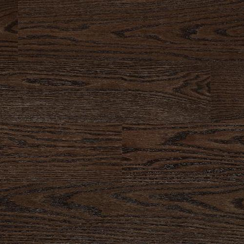 Nouveau 6 Collection Toasted Brown