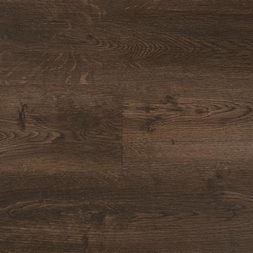 Hydrogen 6 - Plank Tempted