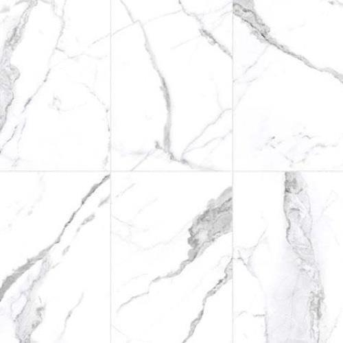 Statuario Stone - 24x24