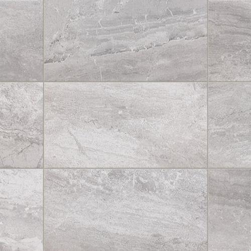 Classics - Shasta Grey - 12X24