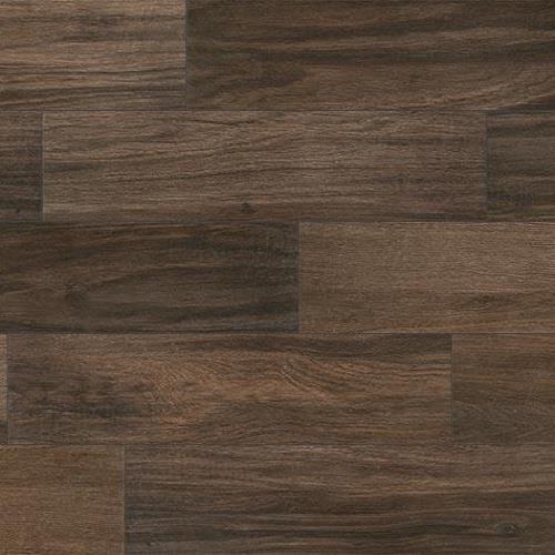 Cinnamon - 6x36